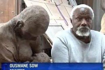 Le sculpteur sénégalais Ousmane Sow est mort tôt jeudi 1er décembre à Dakar