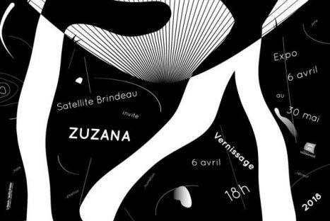 EX___________position de Zuzana
