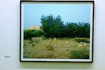 Ron Amir, Exposition