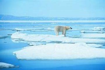 CONFERENCE : L'Arctique, nouvel eldorado?