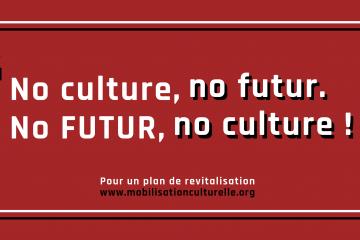 La culture est-elle un enjeu gouvernemental ?