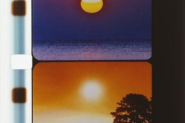 MuMaBoX Le soleil dans les yeux